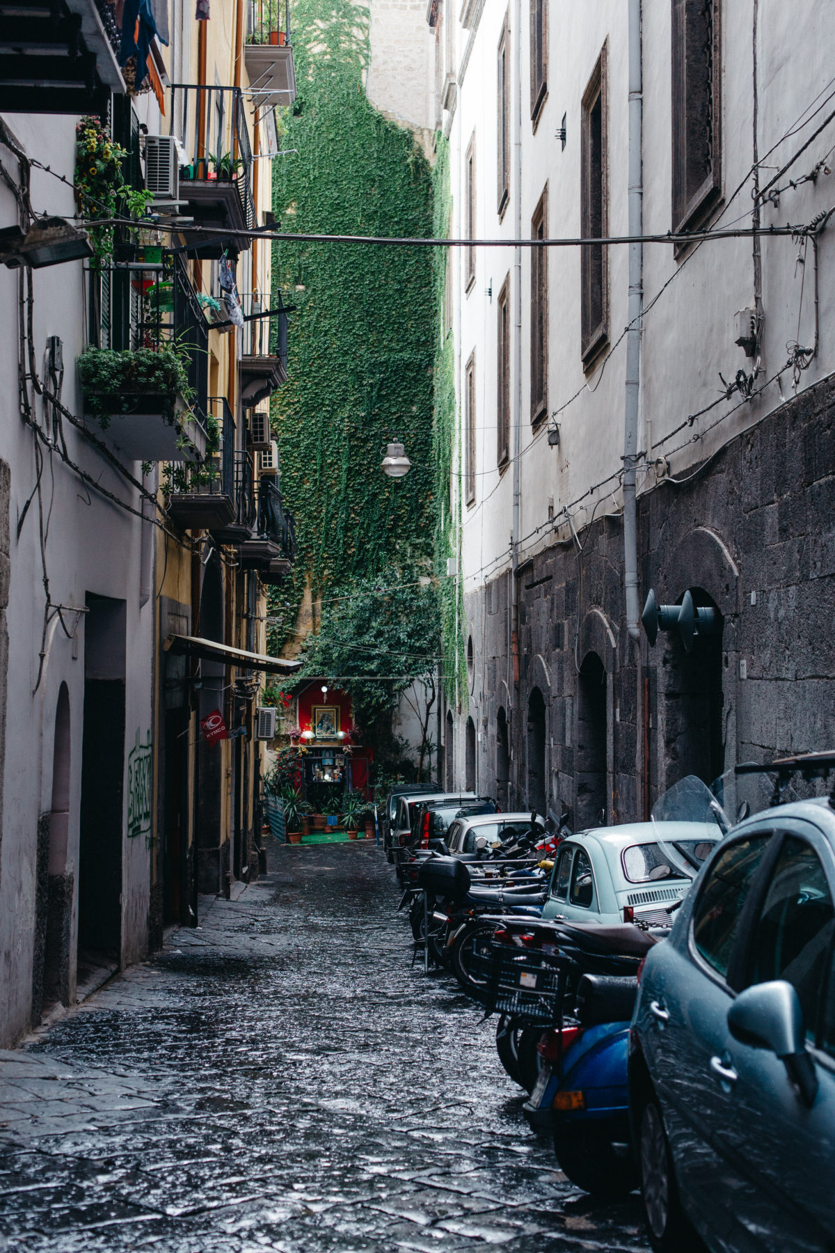 City Limitless: Naples | Herschel Supply