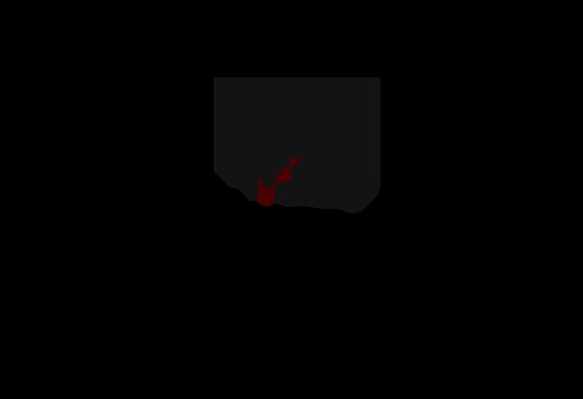 Socci_Logo_Design